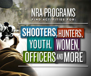 Tips on nra youth education summit essay?